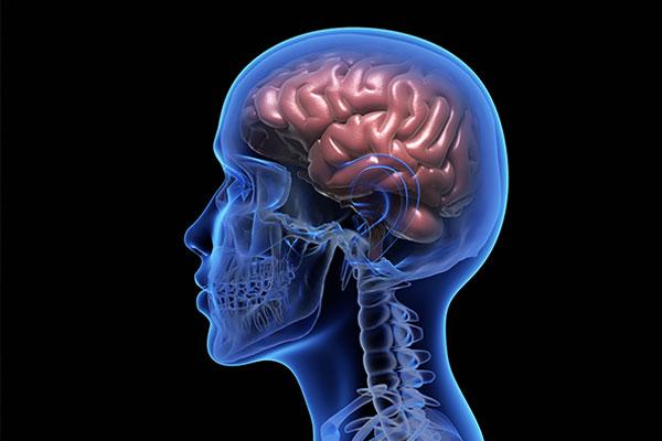 Maślan korzyści dla zdrowia - Co to jest maślan? Jak wpływa na nasz mózg?