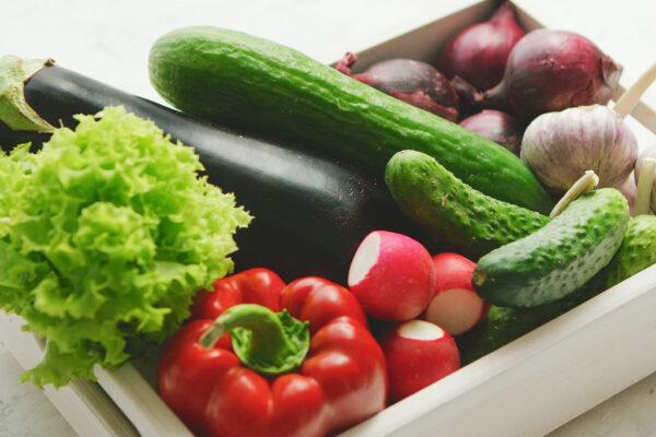 Znaczenie flory bakteryjnej dla naszego zdrowia