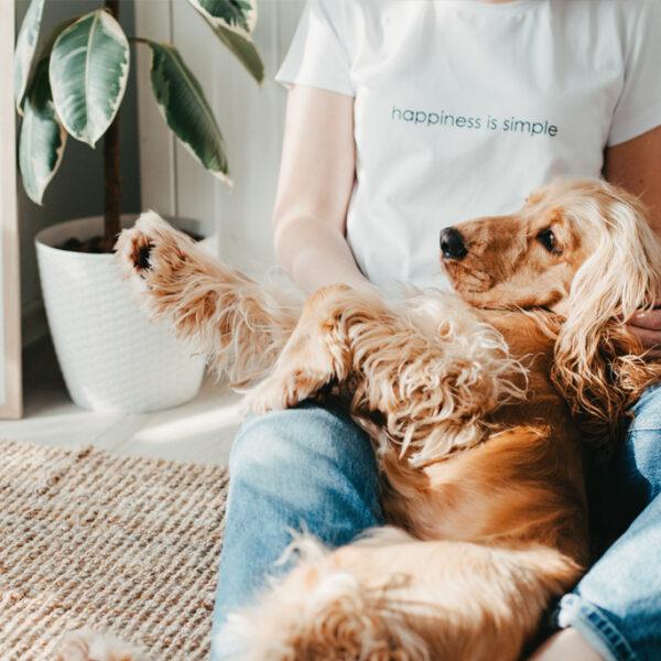 Pozytywny wpływ zwierząt na nasze zdrowie. A czy ty masz jakiegoś zwierzaka?